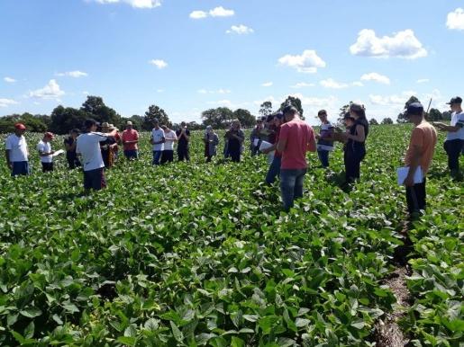 Casa Familiar Rural de Iporã do Oeste abre pré-matrículas para curso técnico em agricultura