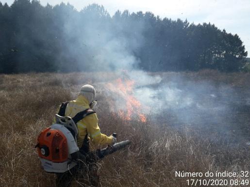 Bombeiros combatem fogo em lavoura de aveia